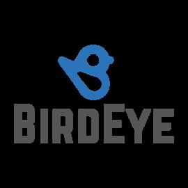 BirdEye logo